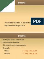 Slide 16 Diretiva