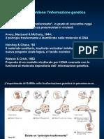 1-2 DNAtecniche Base