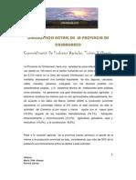 Diagnóstico Provincia de Chimborazo