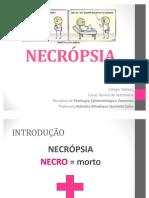PAT 03 - NECRÓPSIA