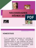 NECESIDADES HIDRICAS