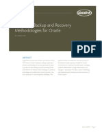 Datalink Oracle Backup Recovery White Paper