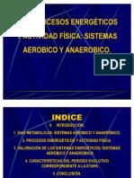T.19.PROCESOS ENERGÉTICOS Y ACTIVIDAD FÍSICA