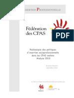 Politiques d'insertion professionnelle des Cpas Wallons