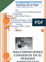 Malformaciones Congenita en El Periodo Embrionario