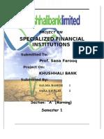 Finance Project on Khushhalibank