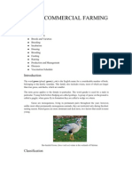 GEESE; COMMERCIAL FARMING