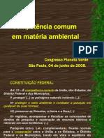 PowerPoint Gustavo Trindade - Competência Comum