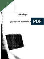 disp-economia_politica