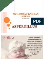 ASPERGILLLUS