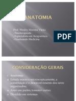 1 ANATOMIA[1]