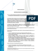 TDR.gestor.de.Proyecto