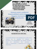 Gerencia Ambiental y Social
