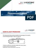 Training Fluorescent Lamps USA