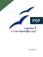 Ce este OpenOffice