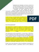 Clima Organizacional - Ricardo Mallet