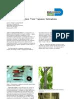 Propagacion de Frutos de Plantas Tropic Ales