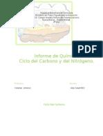 Ada Casart Informe de Quimica