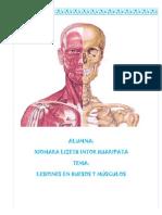 Lesiones Del Huesos y Musculos