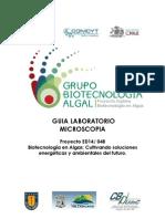Guia Lab Microscopia