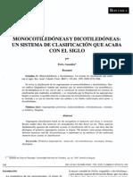 dicotiledoneas monocotiledoneas