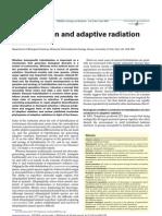 Hybridization and Adaptive Radiation