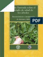 Plantas.Guia.Ilustrada.Sobre.El.Estado.De.Salud.De.Los.Arboles.PDF.by.chuska.