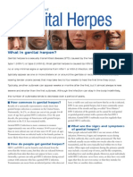 Herpes Fact Sheet Lowres 2010