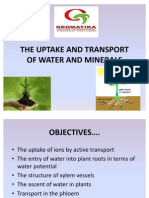 The Uptake and Transport of Water and Minerals