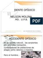 ACCIDENTE OFÍDICO