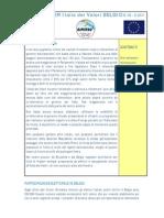 Newsletter IdVBelgio Giugno 2011