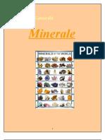 Miner Ale
