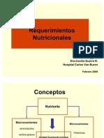 Requerimientos Nutricionales 2009