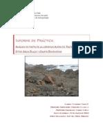 Análisis de pasta de la cerámica burda de Taltal sitios Agua Dulce y Caleta Bandurrias