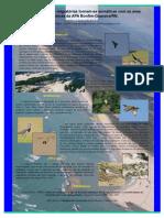 Registros de aves migratórias tornam-se somáticas com as aves endêmicas da APA Bonfim-Guaraíra/RN.