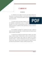 BORRADOR ORIGINAL DE CAÑONEO