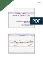 GENÉTICA DA DIFERENCIAÇÃO SEXUAL