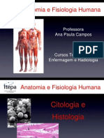 Aula 2 - Itepa 2011 PDF