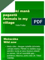 Animals in My Village ( Nordplus)