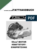 Werkstatthandbuch TSDI Elytar,Looxor