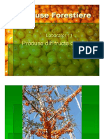 Fructe de Padure Partea 1