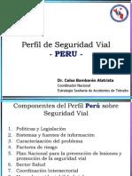 Perfil de Seguridad Vial - Peru