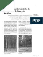 costos produccion eucalipto