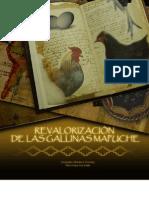 Revalorizacion de Las Gallinas Mapuche