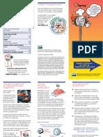 BrochureSP