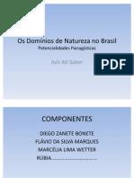 Os Domínios de Natureza no Brasil