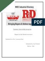 summertrainingprojectreport1-110619044949-phpapp02