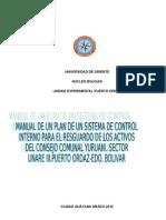 Manual de Sistema Control Interno