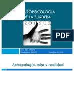 Neuropsicología de la zurdera
