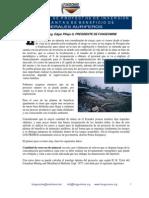 07 ion Proyectos Inversion Plantas Beneficio